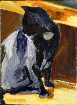 September: Contemplative Cat