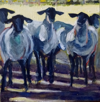 Jim's Sheep (12 x 12)